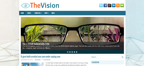 thevision-wordpress-theme